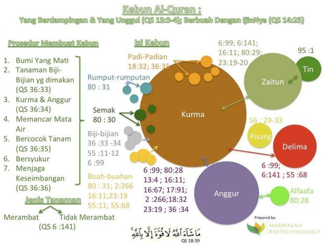 Kebunku Kebun Al Quran